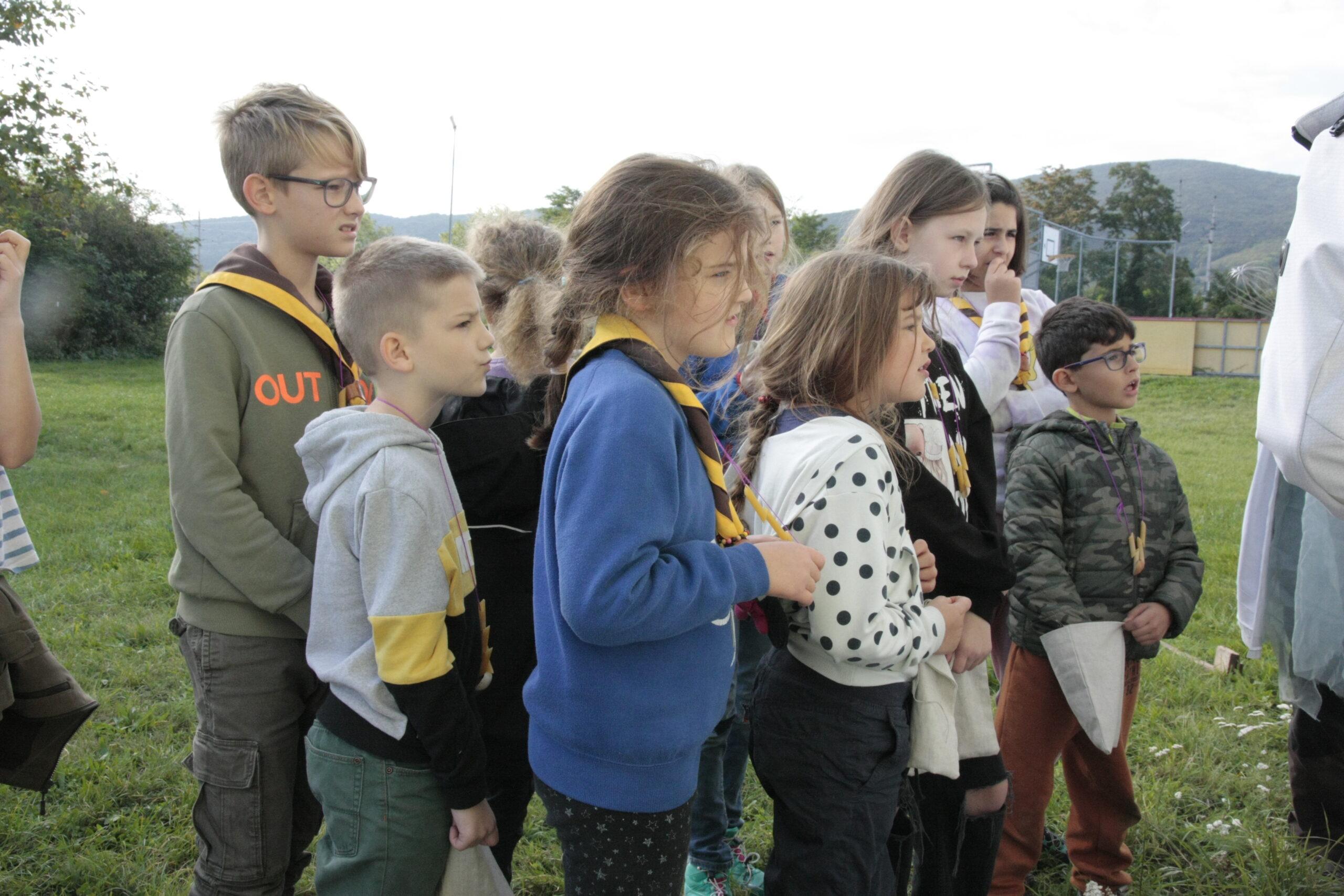 Read more about the article Die WiWö waren auf Herbstlager